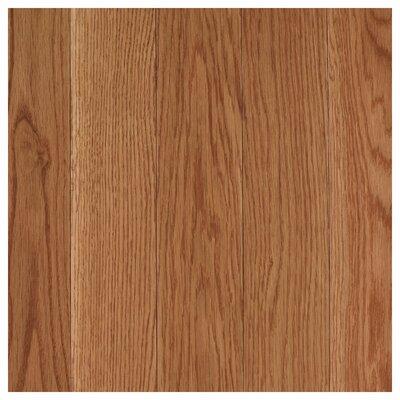 Randleton 3-1/4 Solid Oak Hardwood Flooring in Golden