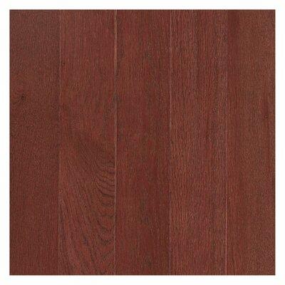 Randleton 3-1/4 Solid Oak Hardwood Flooring in Cherry