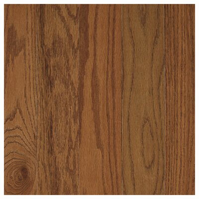 Randleton 3-1/4 Solid Oak Hardwood Flooring in Chestnut