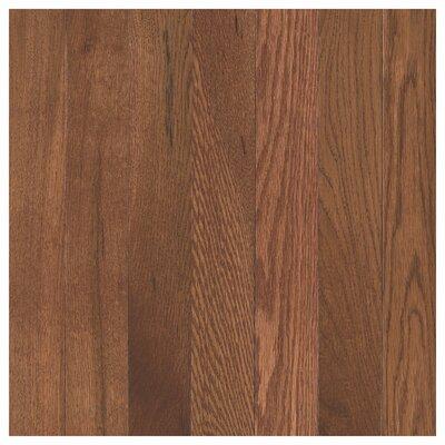 Barletta 2-1/4 Solid Oak Hardwood Flooring in Winchester