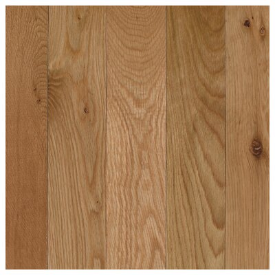 Barletta 3-1/4 Solid Oak Hardwood Flooring in White Natural