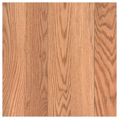 Barletta 3-1/4 Solid Oak Hardwood Flooring in Red Natural