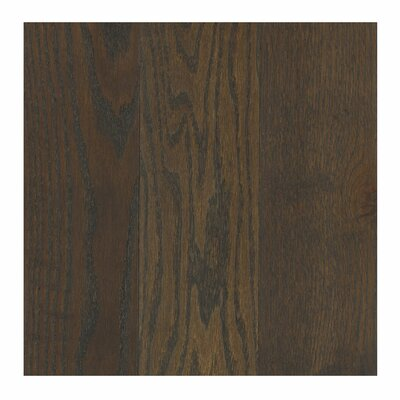 Travatta 3-1/4 Solid Oak Hardwood Flooring in Wrought Iron