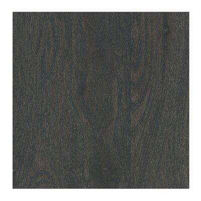 Charmaine 3-1/4 Solid Oak Hickory Hardwood Flooring in Ashen