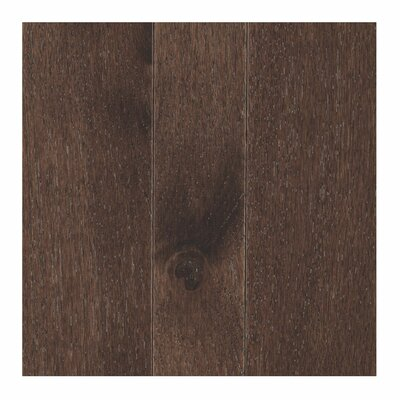 Charmaine 3-1/4 Solid Oak Hickory Hardwood Flooring in Coffee Bean
