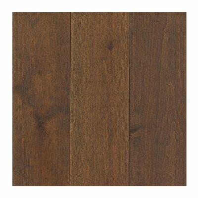 Travatta 5 Solid Maple Hardwood Flooring in Prairie