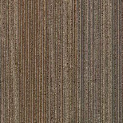 Minsk 24 x 24 Carpet Tile in Applied Brilliance