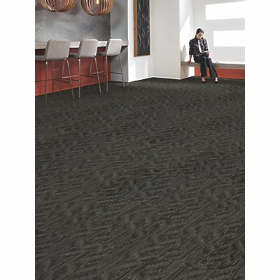 Ghent 24 x 24 Carpet Tile in Well Composed