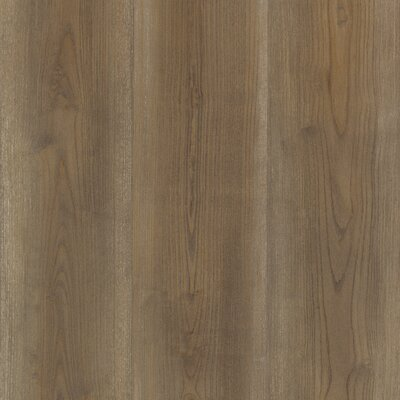 7.5 x 47.25 x 8mm Pine Laminate in Kaffee Brown