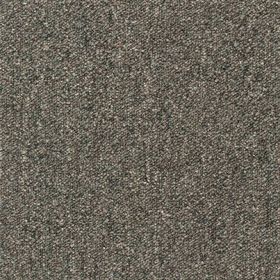 Cutler 24 x 24 Carpet Tile in Earthed Fields