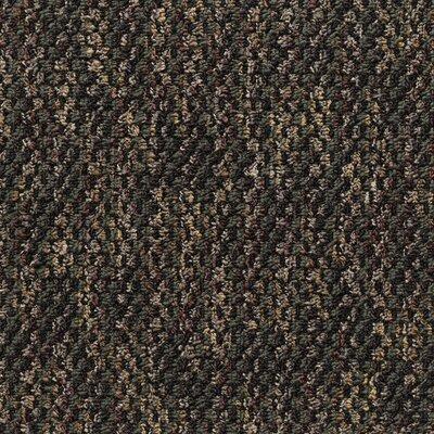 Machais 24 x 24 Carpet Tile in Socrates