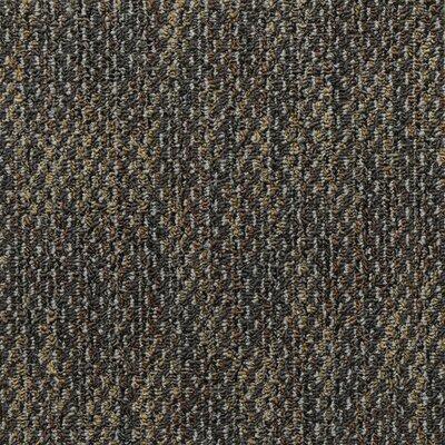 Machais 24 x 24 Carpet Tile in Dante