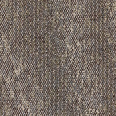 Mt Desert 24 x 24 Carpet Tile in Scientist