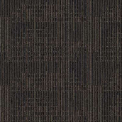 Waterville 24 x 24 Carpet Tile in Ore