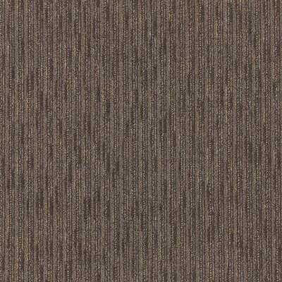 Freeport 24 x 24 Carpet Tile in Scholar