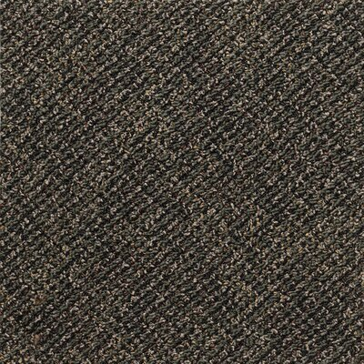 Farmington 24 x 24 Carpet Tile in Socrates