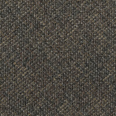 Farmington 24 x 24 Carpet Tile in Dante