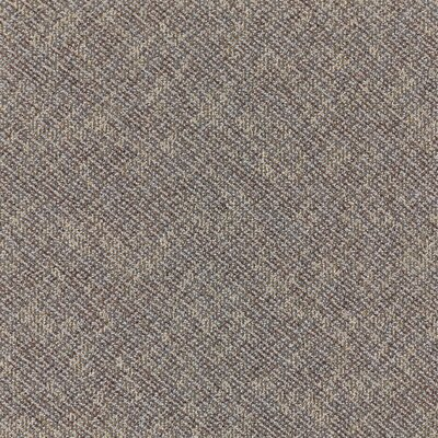 Laconia 24 x 24 Carpet Tile in Scientist