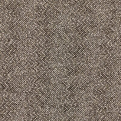 Laconia 24 x 24 Carpet Tile in Composer
