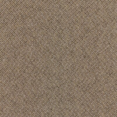 Laconia 24 x 24 Carpet Tile in Educator