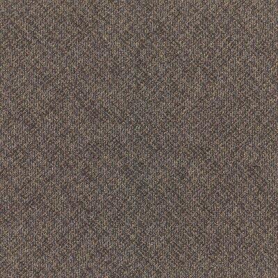 Laconia 24 x 24 Carpet Tile in Scholar