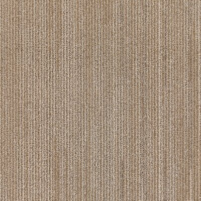 Plymouth 24 x 24 Carpet Tile in Living Fast