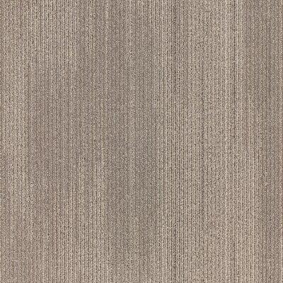 Plymouth 24 x 24 Carpet Tile in Dare Devil