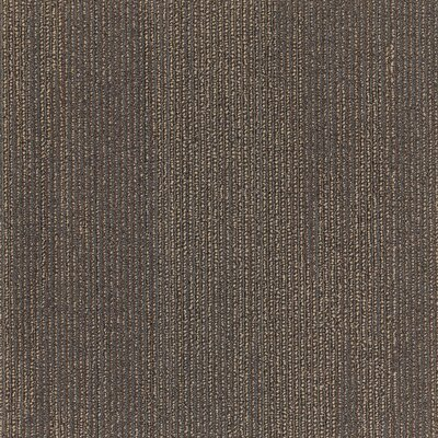 Plymouth 24 x 24 Carpet Tile in Wild Thing