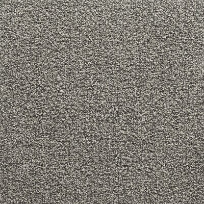 Conway 24 x 24 Carpet Tile in Chameleon Mixer