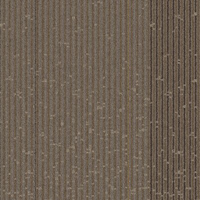 Weare 24 x 24 Carpet Tile in Strategic