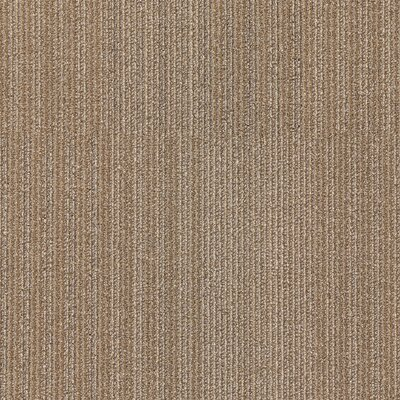 Dracut 24 x 24 Carpet Tile in Living Fast