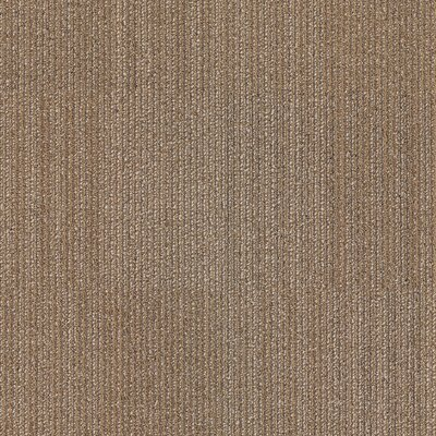 Dracut 24 x 24 Carpet Tile in Tough Guy