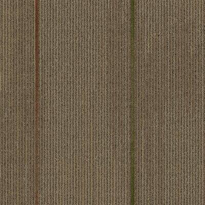 Milton 24 x 24 Carpet Tile in Living Fast