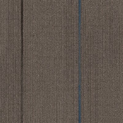 Milton 24 x 24 Carpet Tile in Thrill Seeker