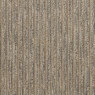 Rockland 24 x 24 Carpet Tile in Hugo