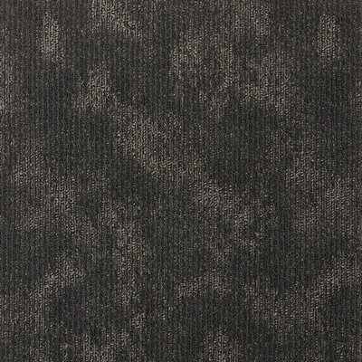 Belmont 24 x 24 Carpet Tile in Wild Terrain