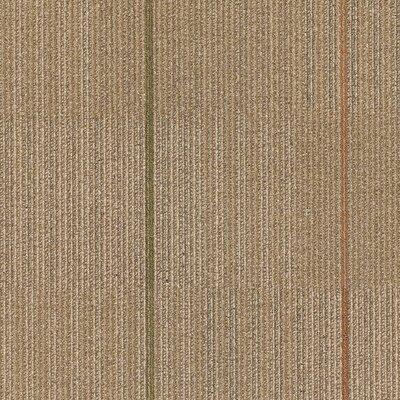 Kearsage 24 x 24 Carpet Tile in Living Fast