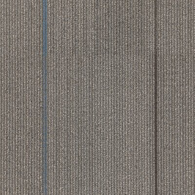 Kearsage 24 x 24 Carpet Tile in Thrill Seeker