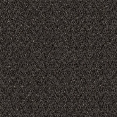 Barre 24 x 24 Carpet Tile in Iron Ore