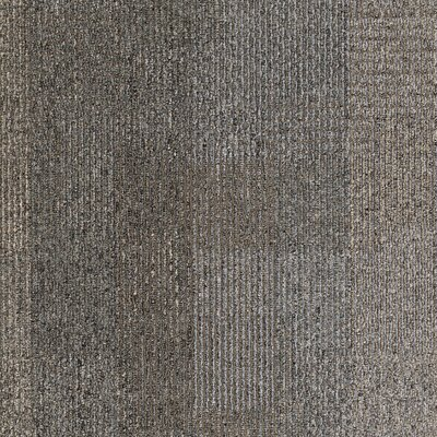 Franconia 24 x 24 Carpet Tile in Physical