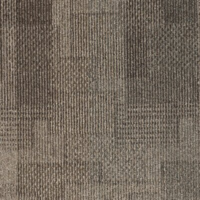 Franconia 24 x 24 Carpet Tile in Transitory