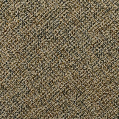 Farmington 24 x 24 Carpet Tile in Bach