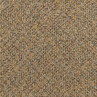 Farmington 24 x 24 Carpet Tile in Hugo