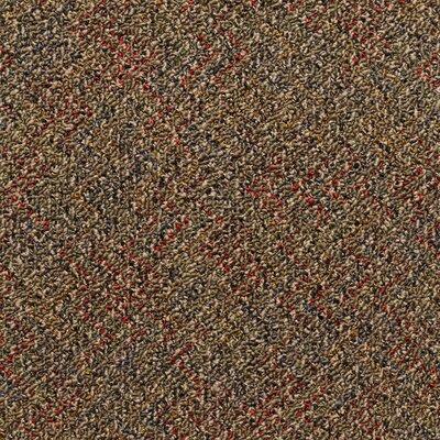 Farmington 24 x 24 Carpet Tile in Aristotle