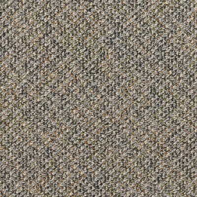 Farmington 24 x 24 Carpet Tile in Goethe