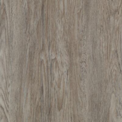 Timbers Path 6 x 48 x 2.5mm Luxury Vinyl Tile in Irrigate