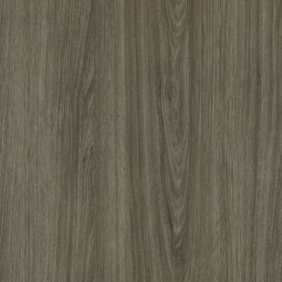 Timbers Path 6 x 48 x 2.5mm Luxury Vinyl Tile in Harvest