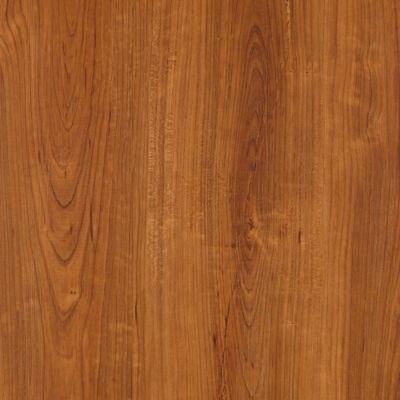 Timbers Path 6