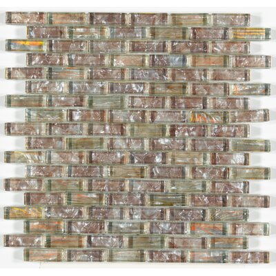 Accent Statements 12 x 12 Glass Mosaic Tile in Amber Shell