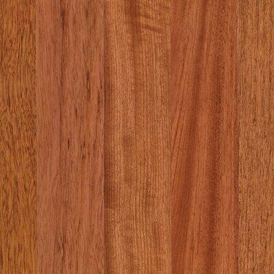 Elysia 3-1/4 Engineered Brazilian Cherry Hardwood Flooring in Natural